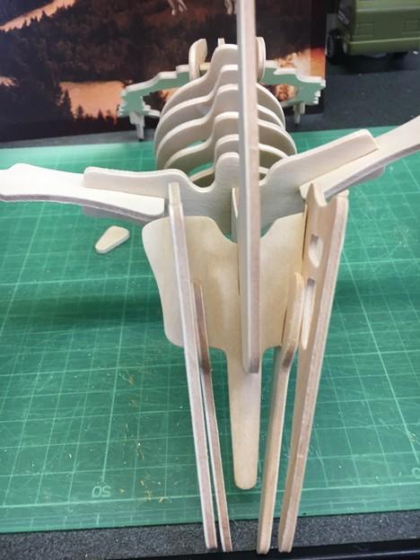 木製組み立て工作恐竜プテラノドン12