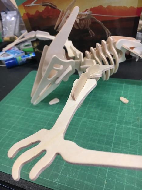 木製組み立て工作恐竜プテラノドン13