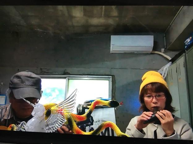 AMI-REN20201125「ふと空を見上げた」をライブ配信05