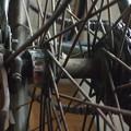 Photos: 自転車