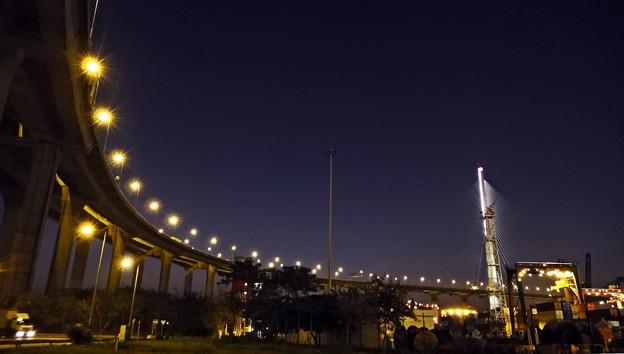 Photos: 橋の下2