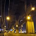 Photos: 橋の下