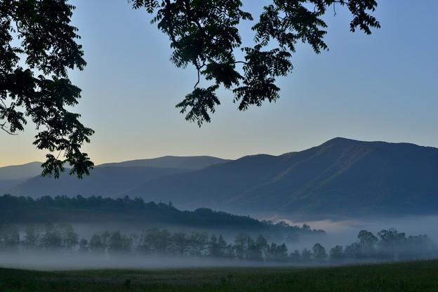 写真: 霧が煙のように