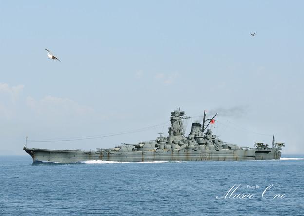 Photos: 武蔵左側面