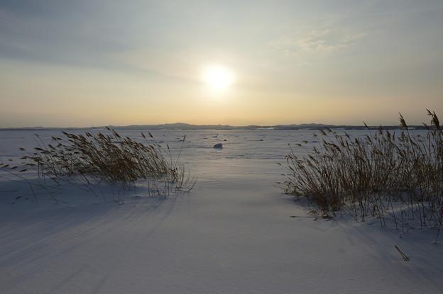 能取湖の冬