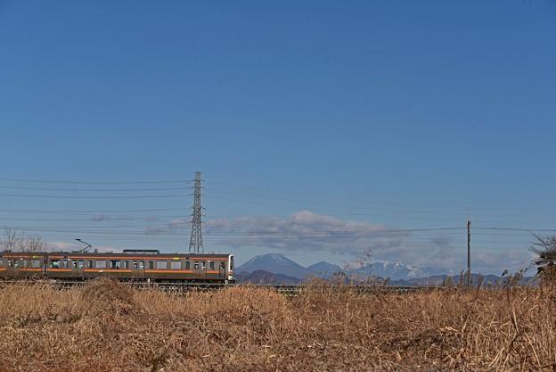 日光連山を背景に