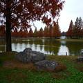 Photos: 川越水上公園