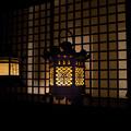写真: Kasuga815-07943