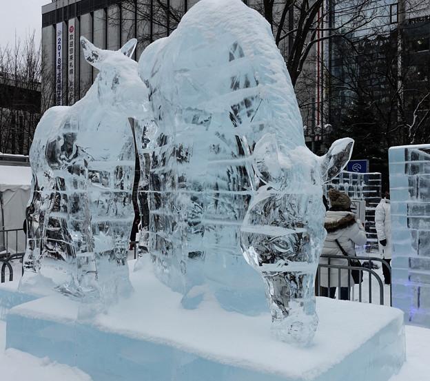 氷馬DSC00061_ed