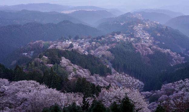 吉野山夜明けDSC06300_ed