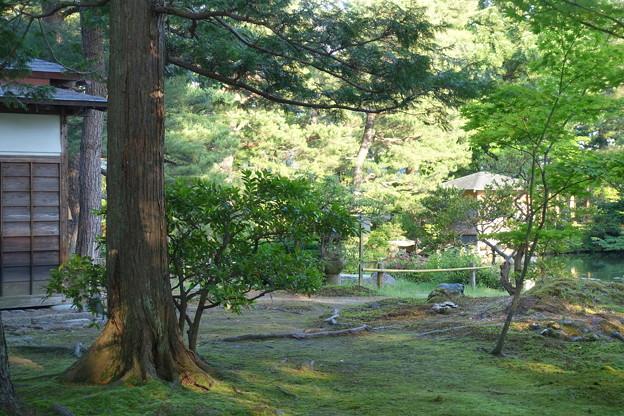 清水園DSC02878
