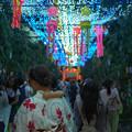 Photos: LED天の川-01745