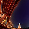 写真: 旧堺燈台熱帯夜-02321