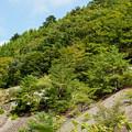 写真: 明延鉱山DSC05706_ed