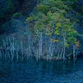 徳山ダムaoiikeS-09738