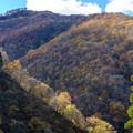徳山ダムS-09466