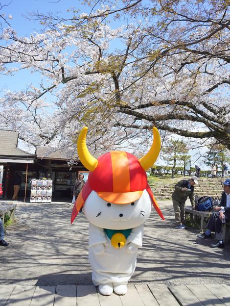 Photos: hikonyanDSC09539_ed