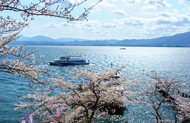 お花見船-09879