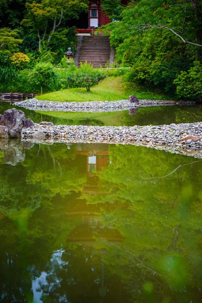 浄瑠璃寺85-08802