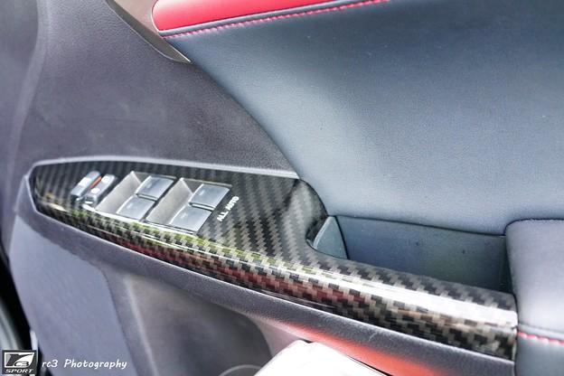 carbon panel_11
