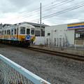 写真: コトちゃん電車