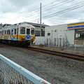 Photos: コトちゃん電車