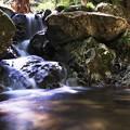 写真: 4月の谷川