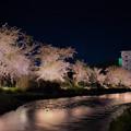 市内を流れる喜門別川沿いの桜 5月9日の事でした (^^)/