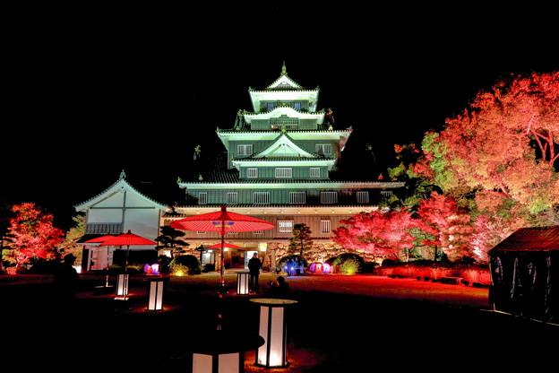 岡山城の夜景