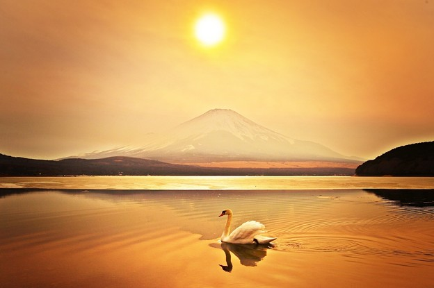 写真: 薄紅に染まる湖