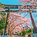 写真: パワースポット ~冨士御室浅間神社~