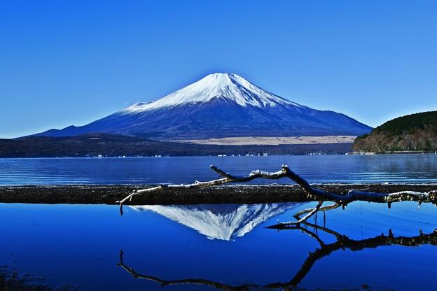写真: 初冬の造景 ~Mt.FUJI~
