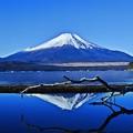 Photos: 初冬の造景 ~Mt.FUJI~