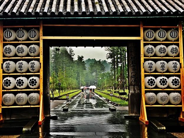 パワースポット ~雨の瑞厳寺~