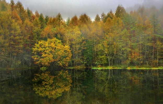 Photos: ここが貴方の好きな場所・・・秋の気配