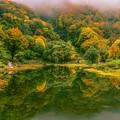 Photos: 鏡面の秋景 ~湯沢高原 アルプの里~