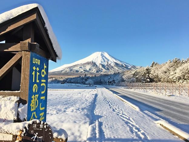 Photos: Mt.Fuji に続く路