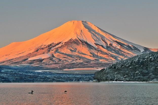氷点下3℃の風景 ~紅富士~