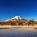 Photos: 氷点下3℃の風景 ~快晴の朝富士~