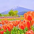 Photos: Pastel Color の風景 ~Mt.FUJI~