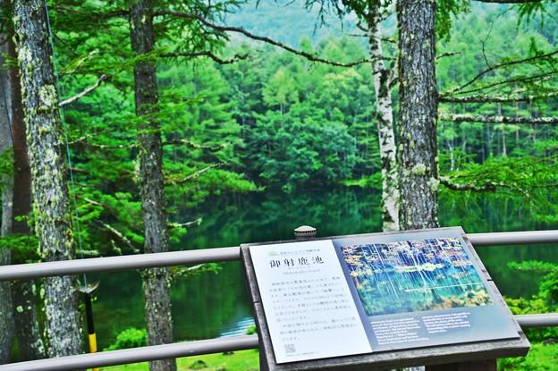 Photos: GoTo 御射鹿池