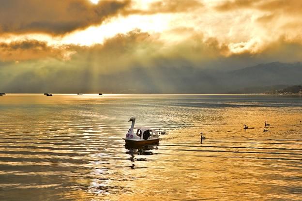 スワンの湖 ~光芒~