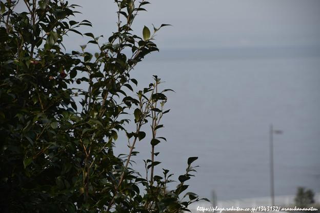 0117 海が見える