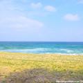 0005 海の中道海浜公園といえば