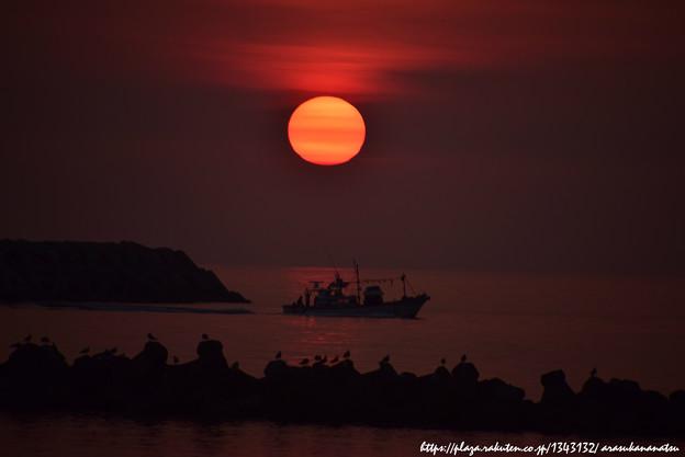 0064 漁船を見送る夕陽とカモメ