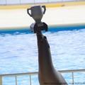Photos: 0048 優勝カップ