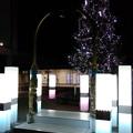 写真: 道の駅庄和のイルミネーション2