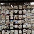 写真: 鷲宮神社の絵馬の数々