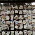Photos: 鷲宮神社の絵馬の数々