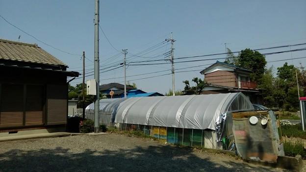 写真: 杉戸町下野集会所のところから撮影1